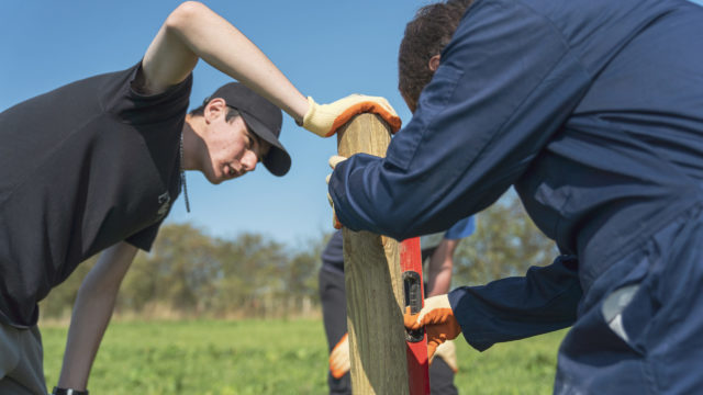 Students measuring a wooden pole in the field