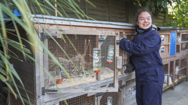Student opening the rabbit hutch