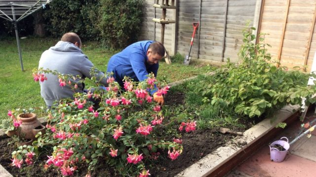 Day Service members tending to a flower patch